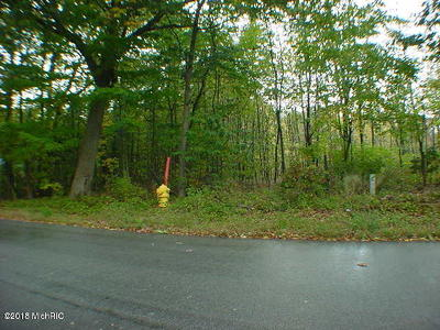 Grand Haven, Spring Lake Residential Lots & Land For Sale: Lot 1-0 Fillmore Street