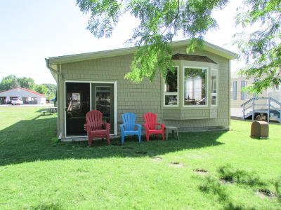 Branch County Single Family Home For Sale: 555 Willow
