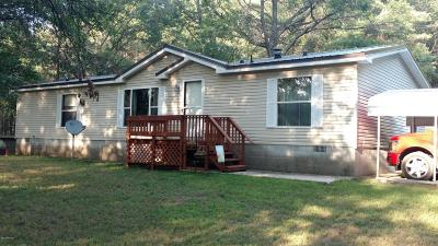 White Cloud Single Family Home For Sale: 3434 S Laurel Drive