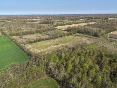 New Buffalo Residential Lots & Land For Sale: 9978 Wilson Road