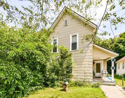Grand Rapids Single Family Home For Sale: 642 Henry Avenue SE