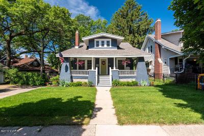 Grand Rapids Single Family Home For Sale: 943 Calvin Avenue SE