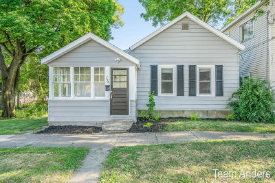 Grand Rapids Single Family Home For Sale: 734 Logan Street SE