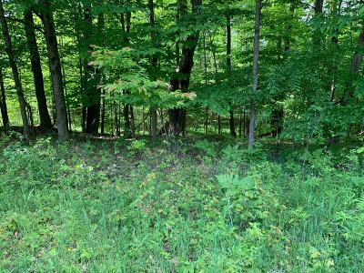 Evart Residential Lots & Land For Sale: 23020 Miramichi Dr Drive