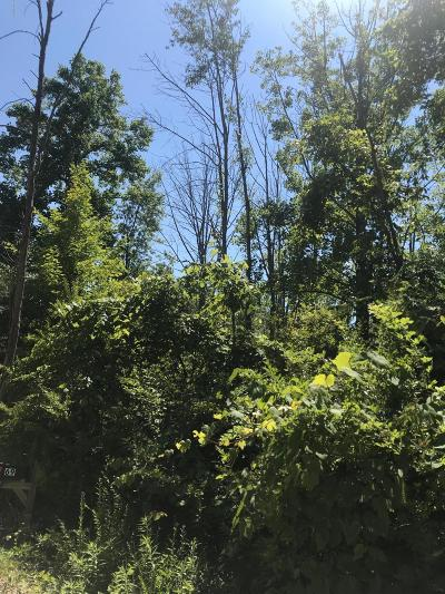 South Haven Residential Lots & Land For Sale: 68 Pershing Avenue