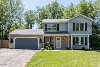 Kalamazoo Single Family Home For Sale: 5025 Mistycreek Drive