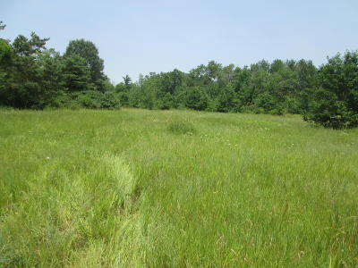 Howard City Residential Lots & Land For Sale: 840 Shaw Street