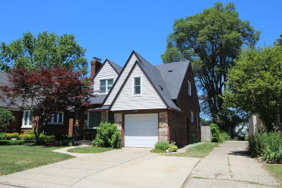 Grand Rapids Single Family Home For Sale: 423 Alger Street SE