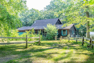 Whitehall, Montague Single Family Home For Sale: 3824 Jay Road