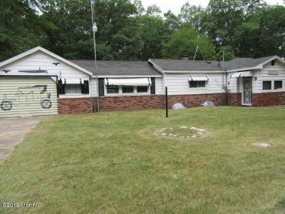 Bitely MI Single Family Home For Sale: $39,900