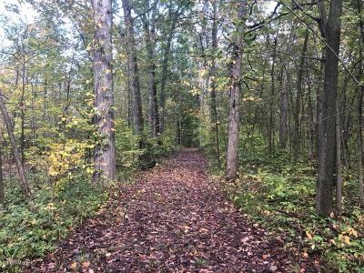 Berrien County, Branch County, Cass County, Calhoun County, Hillsdale County, Jackson County, Kalamazoo County, Van Buren County, St. Joseph County Residential Lots & Land For Sale: Wellman Road