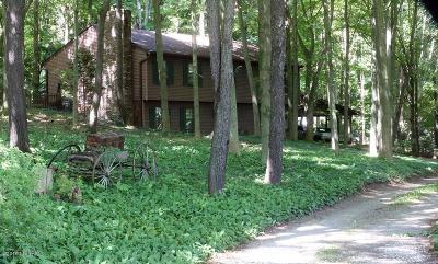 Saugatuck, Douglas Single Family Home For Sale: 316 Union Street