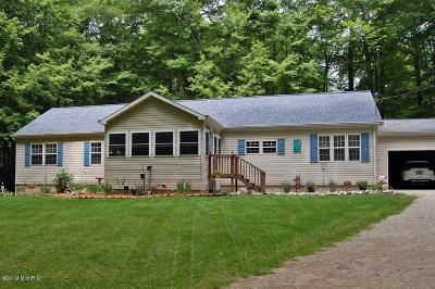 Chippewa Lake, Evart, Rodney Single Family Home For Sale: 6775 E Four Seasons Drive