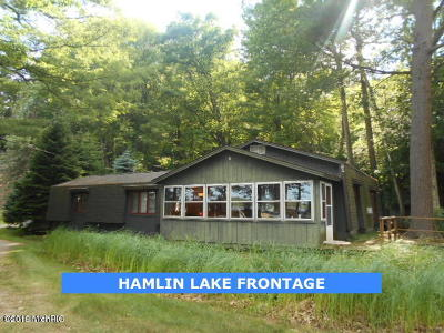 Ludington Single Family Home For Sale: 7626 19th Street