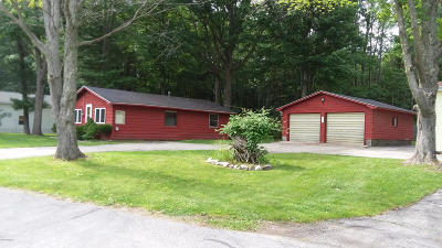 Mecosta County Single Family Home For Sale: 19572 Park Road