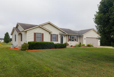 Paw Paw Single Family Home For Sale: 53616 Meadow View Lane