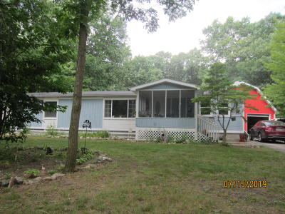Sand Lake Single Family Home For Sale: 23986 Hooker Drive
