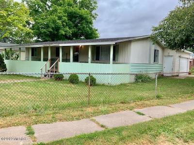 Sand Lake Single Family Home For Sale: 39 Oak Street