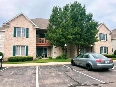 Holland, West Olive, Zeeland Condo/Townhouse For Sale: 3041 E Crystal Waters Drive #3