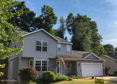 Allendale Single Family Home For Sale: 7136 Pine Grove Street