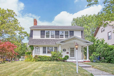 Grand Rapids Single Family Home For Sale: 601 Prince Street SE