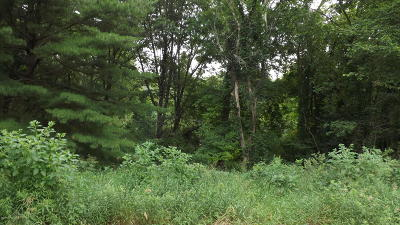 Greenville Residential Lots & Land For Sale: 4311 S Youngman Road