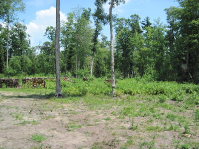 Muskegon Residential Lots & Land For Sale: 3168 Russell Road