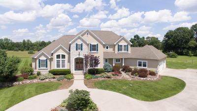 Schoolcraft Single Family Home For Sale: 5860 W R Avenue