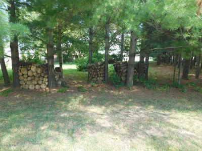 Berrien County, Branch County, Calhoun County, Cass County, Jackson County, Hillsdale County, Kalamazoo County, Van Buren County, St. Joseph County Residential Lots & Land For Sale: 82 Wood Drive