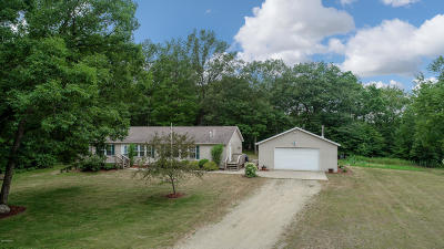 Mecosta Single Family Home Active Contingent: 10975 E Blue Lake Drive
