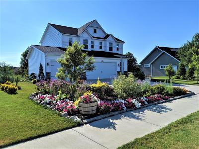 Hudsonville Single Family Home For Sale: 4439 Caspian Drive