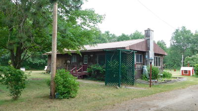 Newaygo Single Family Home For Sale: 5924 Oak Avenue