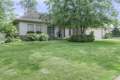 Grand Rapids MI Single Family Home For Sale: $589,900