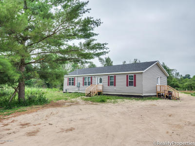 Clinton County, Gratiot County, Isabella County, Kent County, Mecosta County, Montcalm County, Muskegon County, Newaygo County, Oceana County, Ottawa County, Ionia County, Ingham County, Eaton County, Barry County, Allegan County Single Family Home For Sale: 22493 220th Avenue
