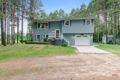 Clinton County, Gratiot County, Isabella County, Kent County, Mecosta County, Montcalm County, Muskegon County, Newaygo County, Oceana County, Ottawa County, Ionia County, Ingham County, Eaton County, Barry County, Allegan County Single Family Home For Sale: 15751 132nd Avenue