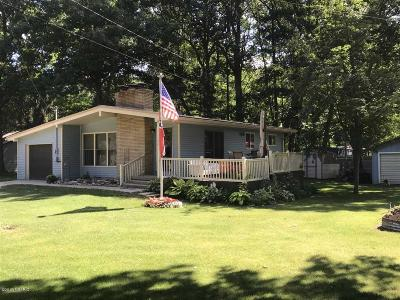 Clinton County, Gratiot County, Isabella County, Kent County, Mecosta County, Montcalm County, Muskegon County, Newaygo County, Oceana County, Ottawa County, Ionia County, Ingham County, Eaton County, Barry County, Allegan County Single Family Home For Sale: 11580 Oriole Drive