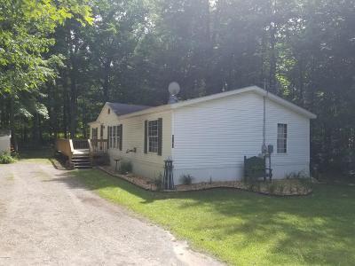 Ludington Single Family Home For Sale: 6767 W Cherry Street