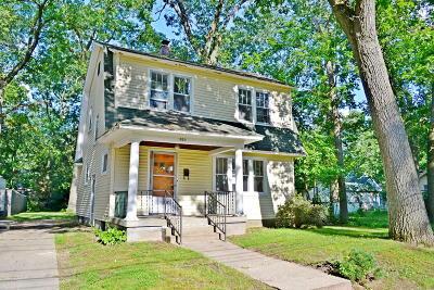 Grand Rapids Single Family Home For Sale: 1850 Newark Avenue SE