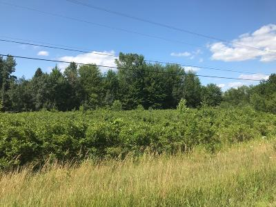 Holland, West Olive Residential Lots & Land For Sale: Blair Street