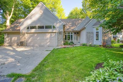 Grand Haven, Spring Lake Single Family Home For Sale: 19047 N Fruitport Road