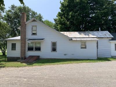 Reading MI Single Family Home For Sale: $329,900