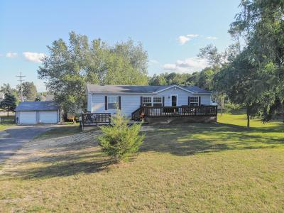 Belding Single Family Home For Sale: 207 Earle Street
