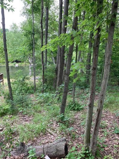 Residential Lots & Land For Sale: 9464 W School Section Lake Drive