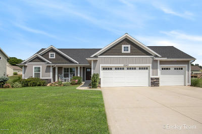 Byron Center Single Family Home For Sale: 2143 Junction Drive SW