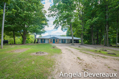 Crystal Single Family Home For Sale: 1387 S Waldron Road