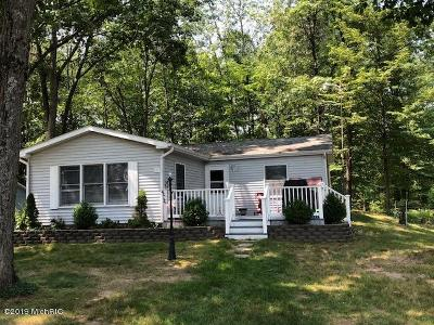 Mecosta Single Family Home For Sale: 9297 W School Section Lake Drive