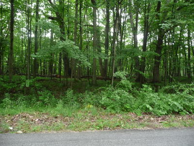 Stanwood Residential Lots & Land For Sale: 11209 Heather Lane