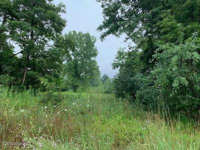 New Buffalo Residential Lots & Land For Sale: 19563 Us 12