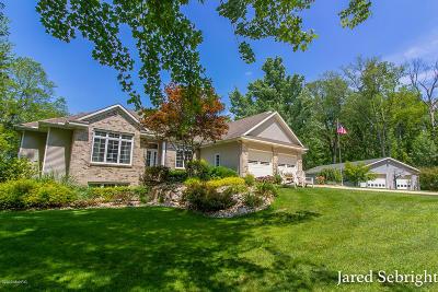 Hudsonville Single Family Home For Sale: 6879 Polk Street
