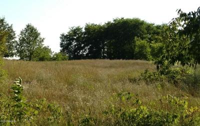 Sparta Residential Lots & Land For Sale: Parcel C NW Sparta Avenue